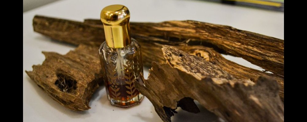 What is Oudh